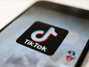 Judge Postpones Trump's TikTok Ban in Suit Brought by Users